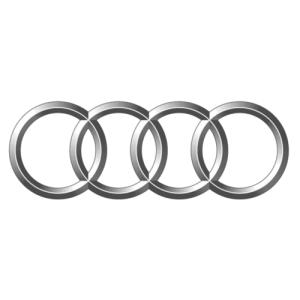 Audi Logo Auto Potgieter