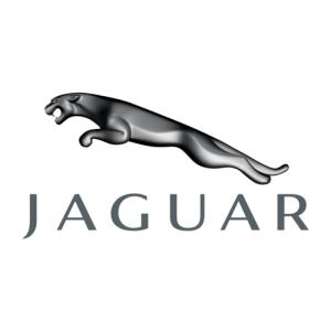 Jaguar Logo Auto Potgieter