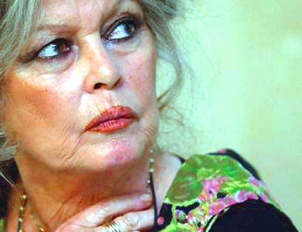 Brigitte Bardot : Vive colère après son dernier dérapage suite aux attentats