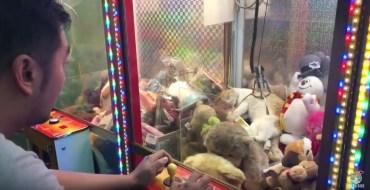 Un chat imperturbable dans une machine à pince