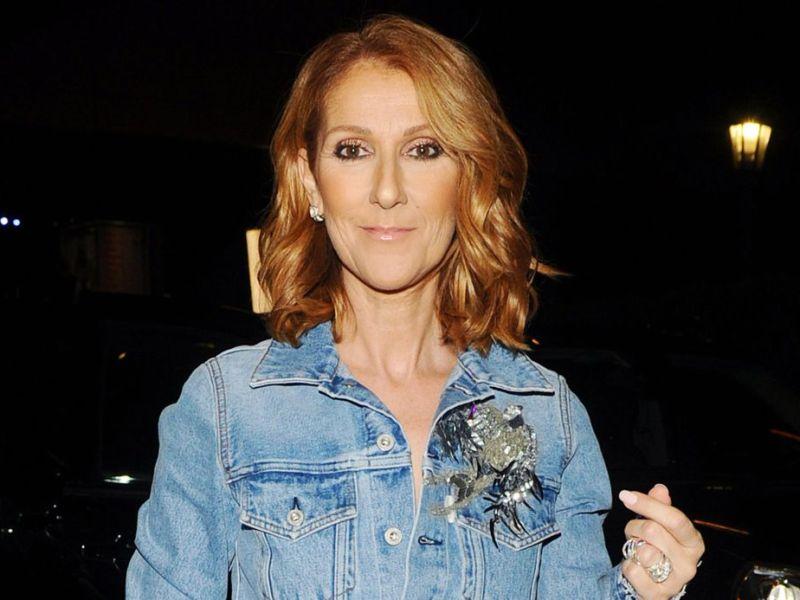 Céline Dion méconnaissable sur Instagram : Les internautes choqués
