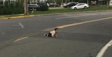 Négligence parentale : Un homme retrouve un bébé qui rampe en plein milieu de la route