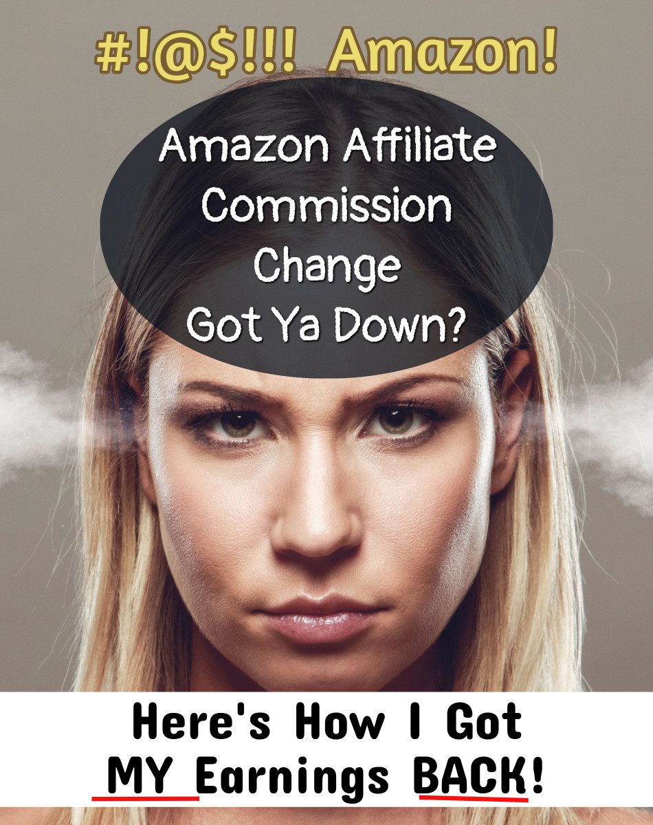 How to recover your lost earnings AFTER Amazon's affiliate commission change.  Great Case Study from PotPieGirl