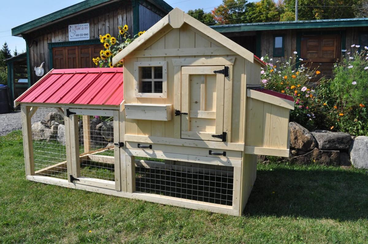 Laplumeausec 1o poules en ville - Poules en ville reglementation ...