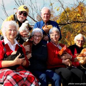 Les poules, les résidences et nos aînées