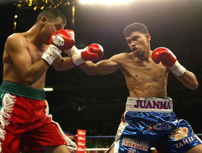 Image result for Juan manuel Lopez vs Jose Luis Caro