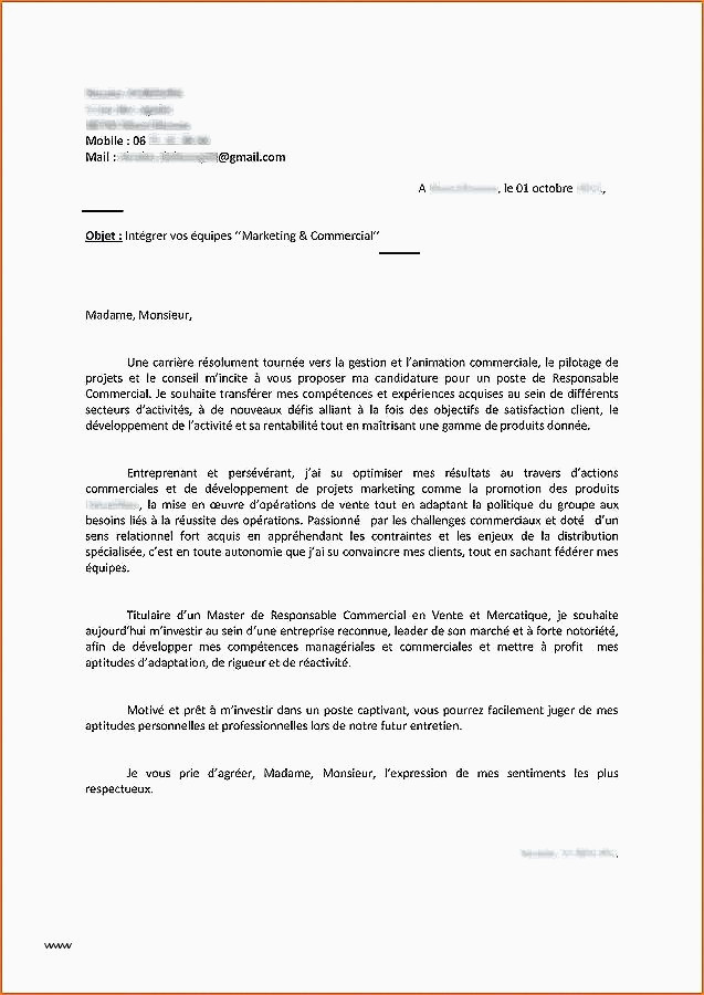 Lettre De Motivation Pour Master Management 15 Exemple Lettre De Motivation Vendeuse