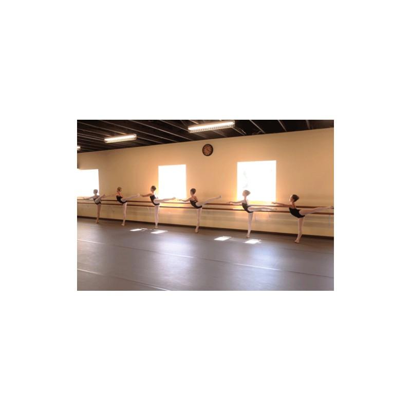 tapis de danse polyvalent harlequin studio
