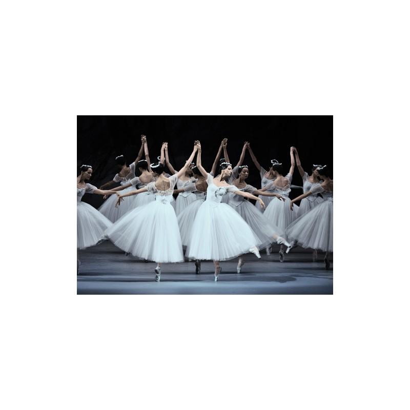 tapis de danse et de scene harlequin cascade