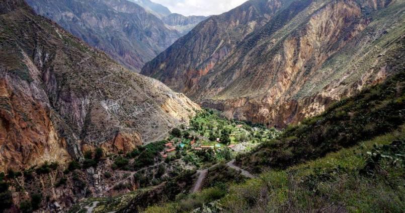 On arrive à l'oasis de Sangalle au fond du canyon de Colca. 1