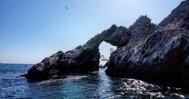Paracas, soit disant les petites Galápagos. C'est beau, mais pas tant que ça et l'envers du décor n'est pas réjouissant... Trop de bateaux, de touristes et aucun moyen de faire autrement : bienvenue dans le monde du tout par tour. ☺ 1