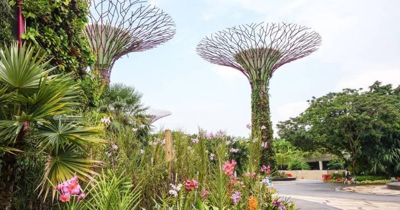 Arrivée à Singapour après avoir raté notre vol pour Kuala Lumpur. ☺ 1