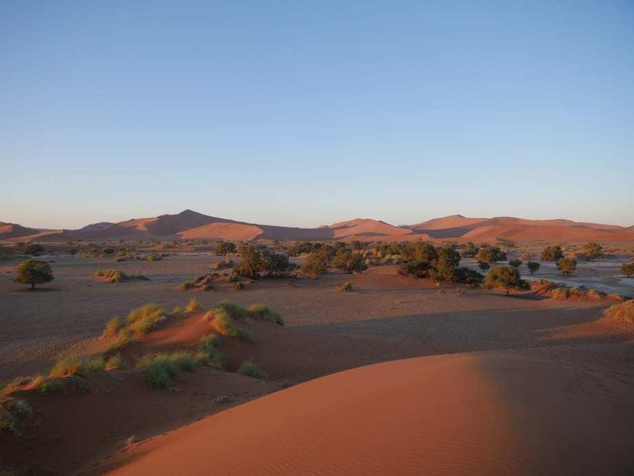 Sesriem : explorer les dunes de Sossusvlei 7