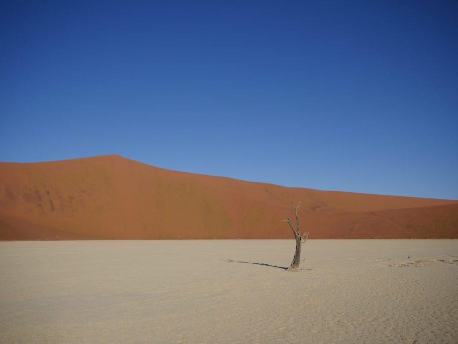 Sesriem : explorer les dunes de Sossusvlei 8