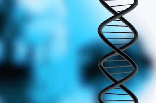 Séquencer le génome en 10 minutes est maintenant possible