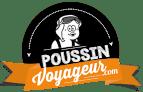 Poussin Voyageur