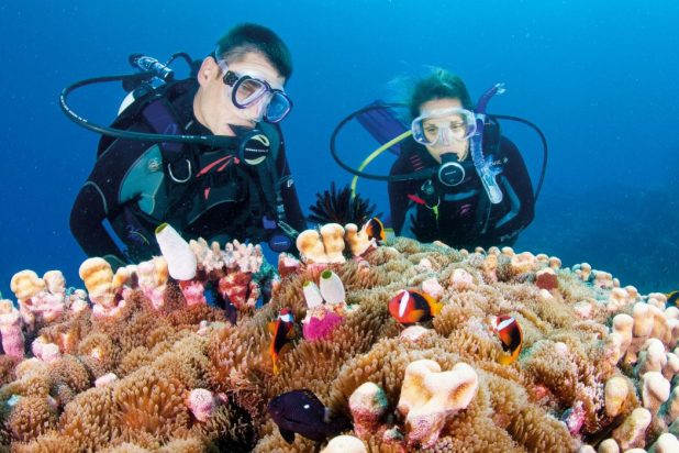 reefs Top 10 Places to Visit Next Year!