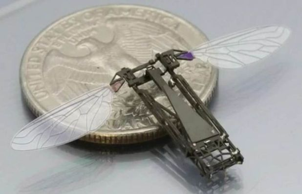 Robo-Insects-of-the-Future How do Robo-Bugs Look Like?