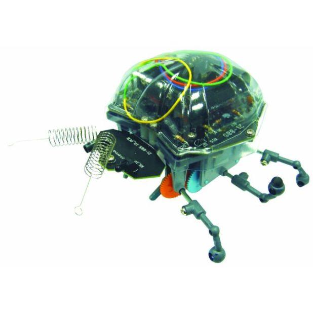 green-bug How do Robo-Bugs Look Like?
