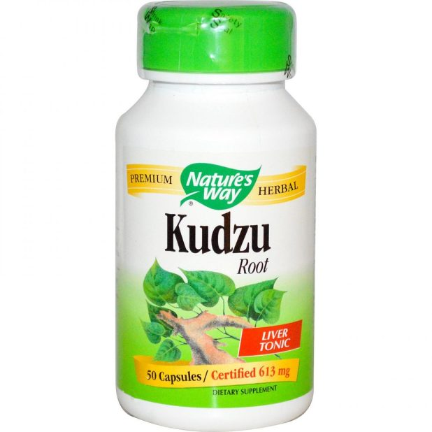 Kudzu1 6 Unique Healing Products That You Must Try