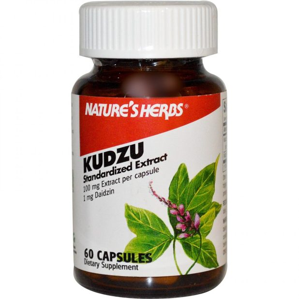 Kudzu3 6 Unique Healing Products That You Must Try