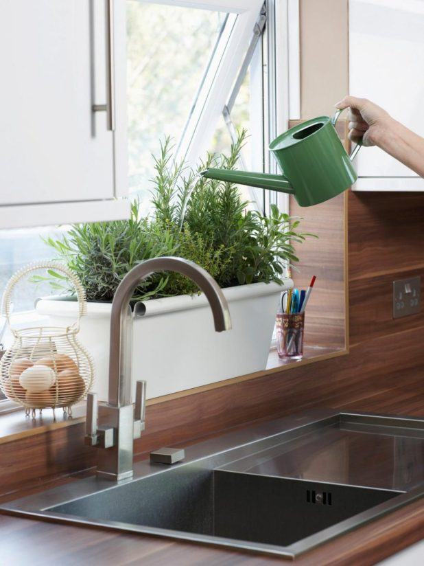 fresh-plants2 5 Kitchens' Decorations Ideas For 2017