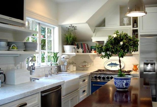 fresh-plants4 5 Kitchens' Decorations Ideas For 2017