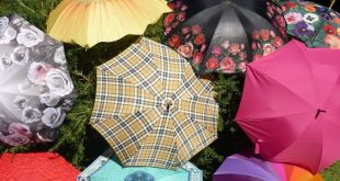 15 Unusual Designs For Umbrellas