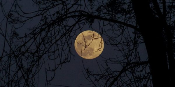full-moon-this-halloween