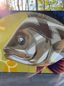 bucharest-the-european-capital-of-romania-and-graffiti-too