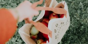 the-zero-waste-lifestyle-tips-for-beginners-on-how-to-live-trash-free