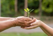 sustainability-how-can-we-easily-educate-our-children