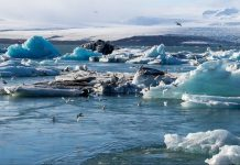 melting-ice-the-cause-for-ancient-viruses-revival