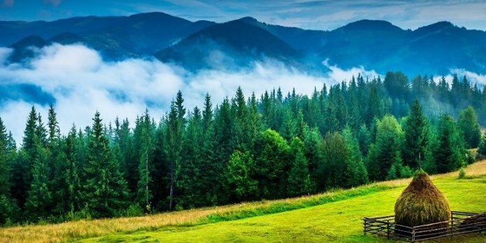 6 attractions in Bukovina that are not churches