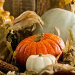 pumpkin-inspired-recipes-for-the-upcoming-autumn