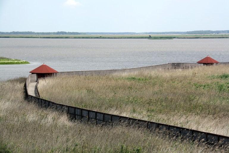 Maďarská pusta je rajom pre pozorovateľov vtákov