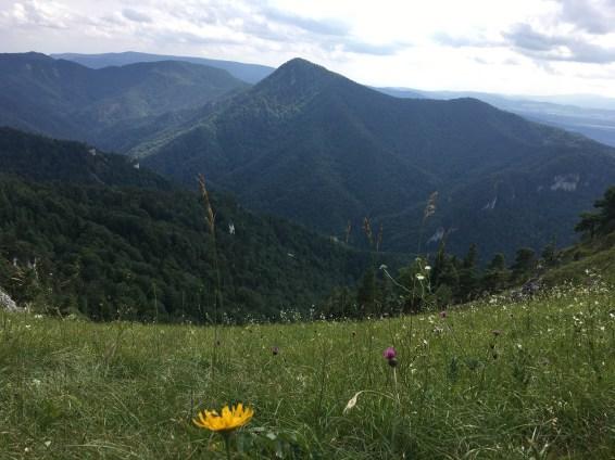 Náš krásny kraj slovenský - výhľad zo sedla Ostrej