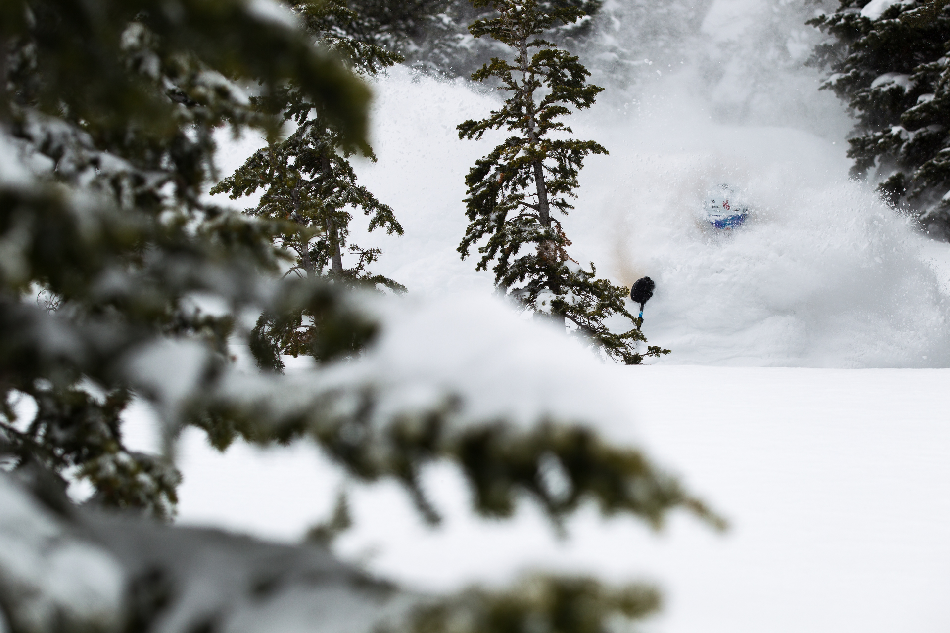 Andrew Whiteford skiing at Jackson Hole, WY.
