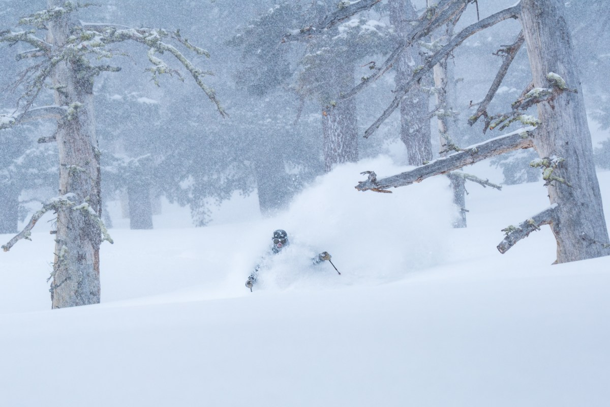 Powder day on West Shore