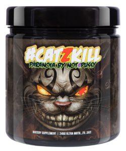 #catzkill kaufen bpspharma Trainingsbooster test supplement hardcore booster test dmha booster