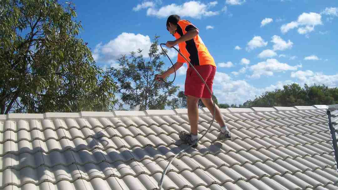 roof-painter