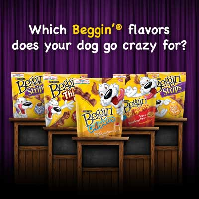 Which Beggin Strips Does Your Dog Love – Vote Now!