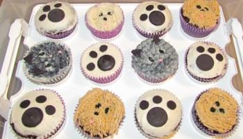 Fun Birthday Party Ideas For Teenage Girls
