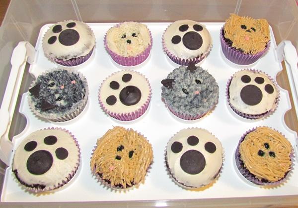 teen birthday cupcakes