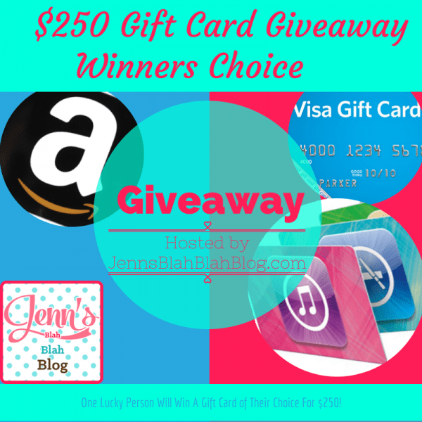 250-Gift-Card-Winners-Choice-Giveaway (1)