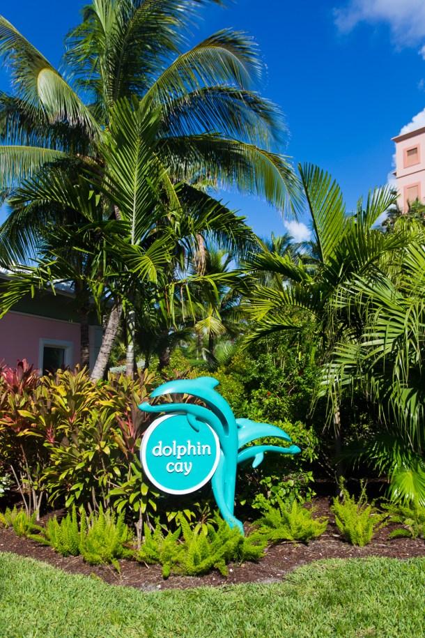 Atlantis Dolphin Cay