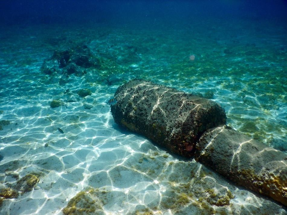 Cozumel Snorkelling