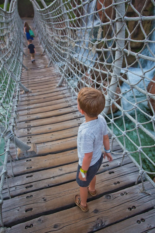 Atlantis Resort Rope Bridge