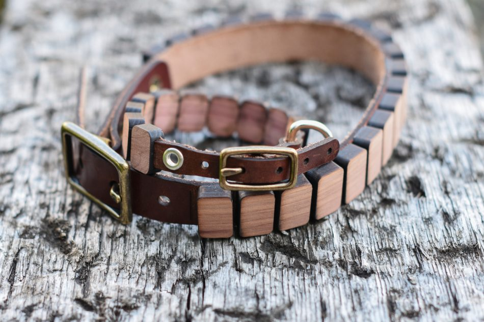 deveros-pet-collars