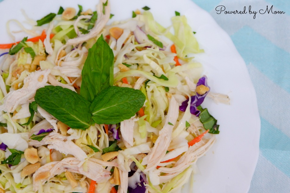 vietnamese chicken salad 5